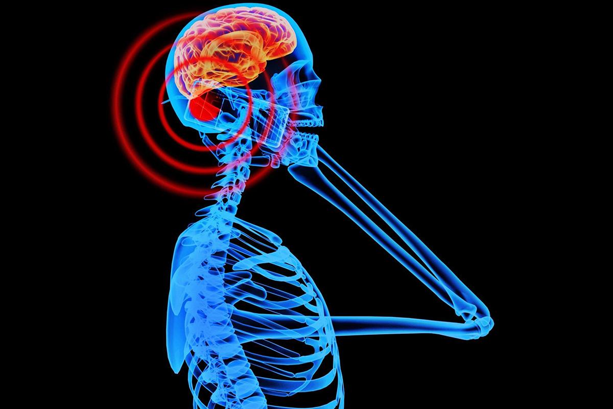 Do Cell Phones Pose a Health Hazard