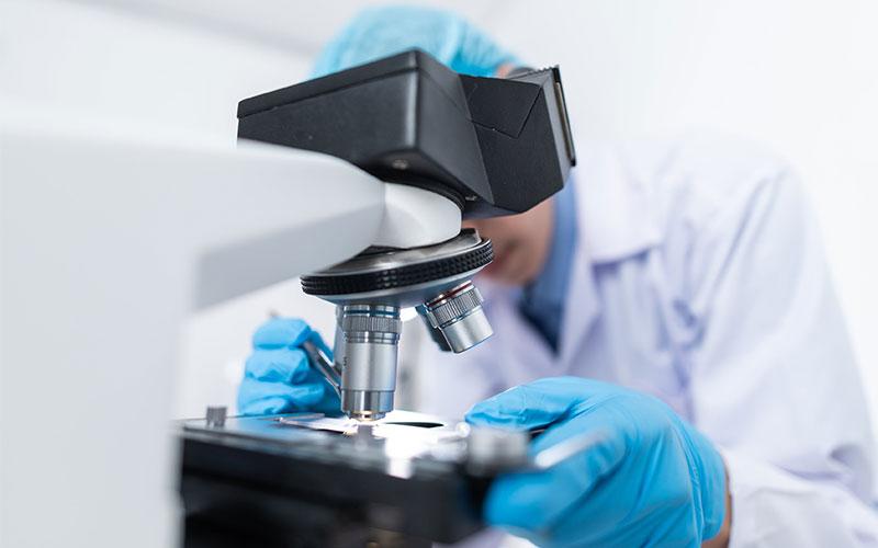 Laboratory (microscope)